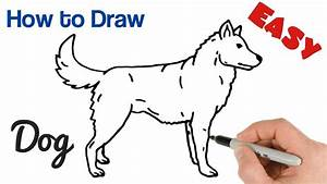 How to Draw a Dog Easy Step by Step   Animals Drawings for ...
