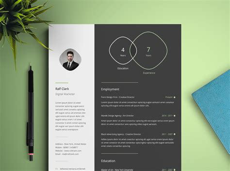 Cv Infography Template by Infographic Resume Template