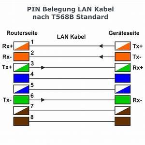 Lan Kabel Belegung : l tek rj45 stecker geschirmt werkzeuglos ~ A.2002-acura-tl-radio.info Haus und Dekorationen