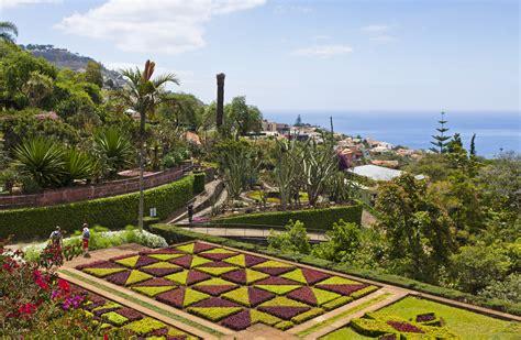 Botanischer Garten Funchal by Madeira Bilder Madeira Urlaub Madeira Reisen Buchen