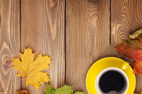 autumn background  yellow cup  coffee gallery