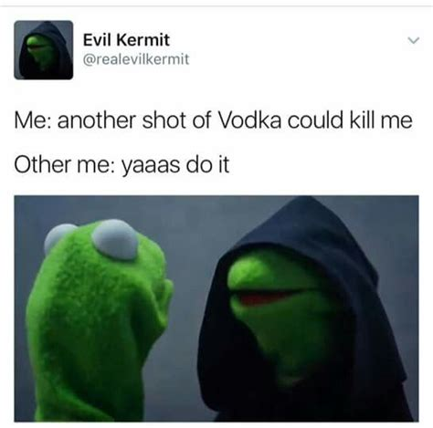 Evil Kermit Memes - 178 best evil kermit images on pinterest funny memes memes humor and ouat funny memes