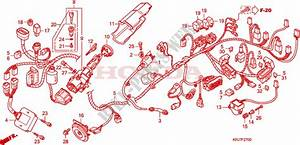Wire Harness For Honda S Wing 125 Fes 2010   Honda