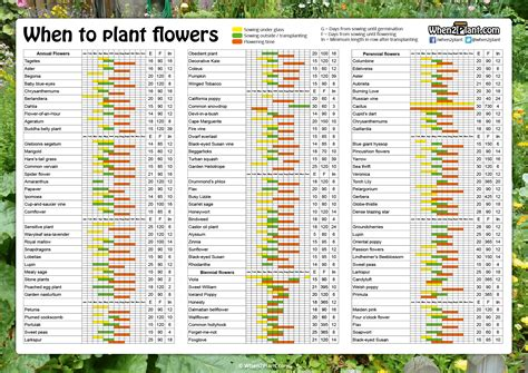 when to plant vegetables when to plant flowers when2plant com
