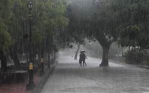 Holiday for schools and colleges in Kerala on Monday due ...