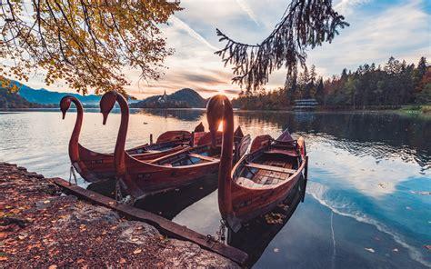 lake bled slovenia swan boats morning sun autumn landscape