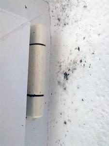 Anti Schimmel Mittel : schimmel im schlafzimmer entfernen und vorbeugung von schimmelbefall ~ Frokenaadalensverden.com Haus und Dekorationen
