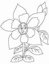 Columbine Flower Yellow Coloring Drawing Getdrawings Pages sketch template