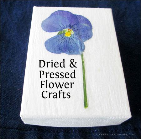 dried flowers craft ideas dried and pressed flower crafts today s craft and 4287