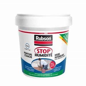 Anti Humidité Mur : stop humidit peinture tanche 0 75l castorama ~ Edinachiropracticcenter.com Idées de Décoration