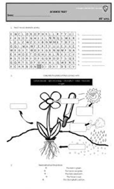 english exercises photosynthesis