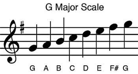 Each note in a scale has a name that matches its function. เข้าใจไวโอลินสเกล,ไวโอลินสเกล
