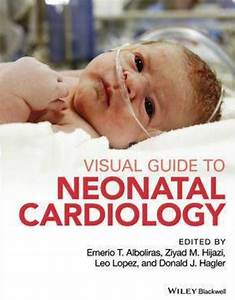 Download Visual Guide To Neonatal Cardiology 1st Edition