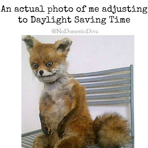Me Adjusting To Daylight Saving Time Its Going Really