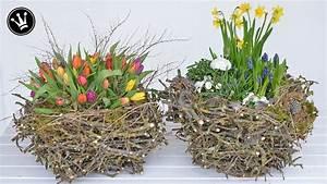 Basteln Mit Zweigen : diy fr hlingsdeko osterdeko selber machen i xxl nest ~ Watch28wear.com Haus und Dekorationen