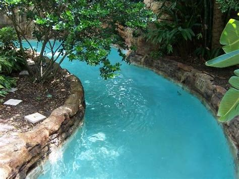 + Best Ideas About Backyard Lazy River On Pinterest