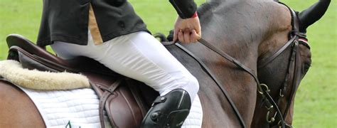 horse registration equestrian