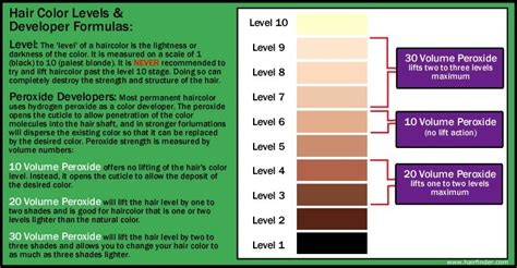 hair color levels haircolor levels peroxide developer lighteners