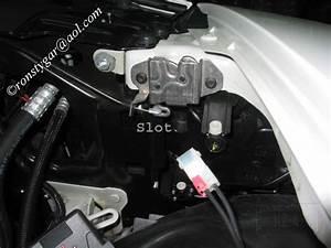 Vw Wiring Diagrams Free Downloads  Vw  Free Engine Image