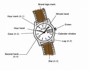 What Are The Part Names Of Watches