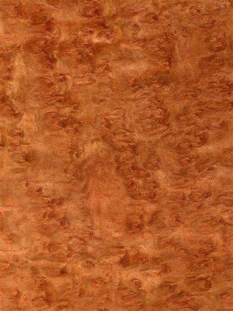 The Benefits of Eucalyptus Flooring   HGTV