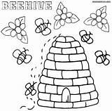 Bee Coloring Beehive Colorings sketch template