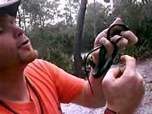 Chief Rowley vs. Snake bite by a Black Mamba!! - YouTube