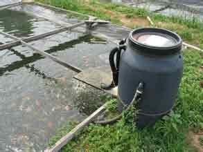 filtration bassin exterieur