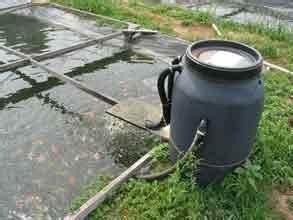 Filtre Bassin Exterieur : filtre a sable pour bassin de jardin bassin de jardin ~ Melissatoandfro.com Idées de Décoration