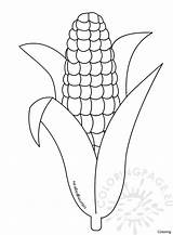 Template Corn Coloring Candy Printable Pages Drawing Thanksgiving Cob Stalk Preschool Sheets Husk Sheet Templates Cartoon Indian Fall Stalks Getdrawings sketch template