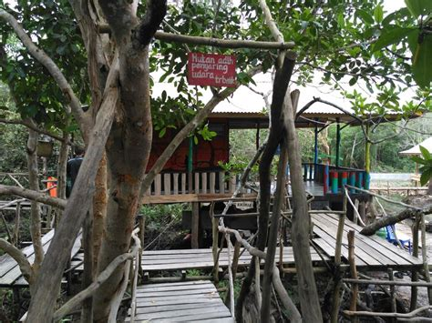 menyusuri mangrove munjang kurau barat hutan amazonya