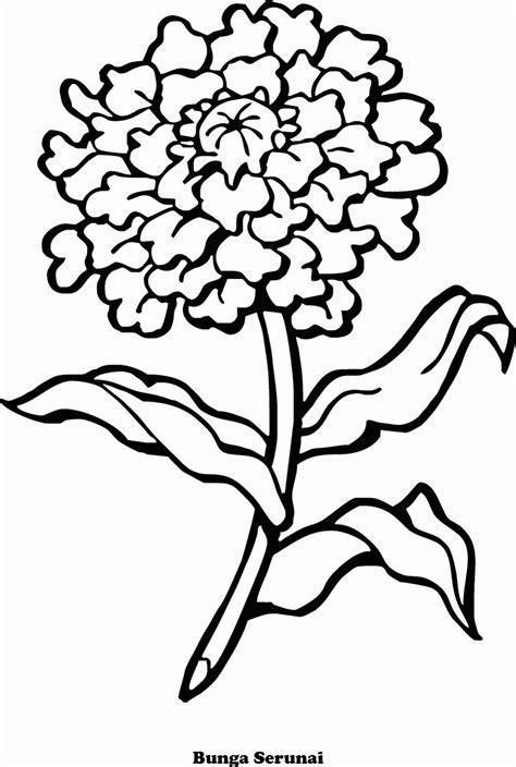 mewarnai gambar bunga serunai