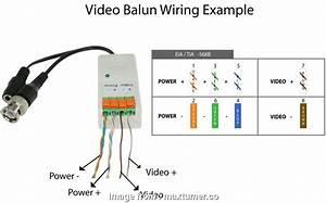 Wiring Diagram  A Rj45 Socket Practical Bnc Connector