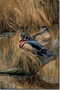 Rosemary Millette Wood Ducks
