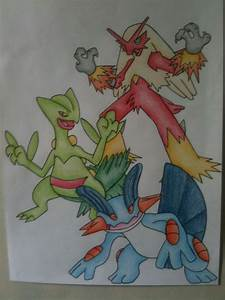 Swampert, Sceptile and Blaziken- Dream World by sazmullium ...