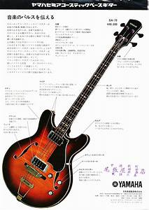Fretwood Hollow Body Bass Wiring Diagram