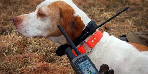 garmin astro  dog gps tracker review mrtrackingcom