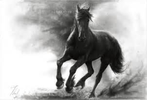 Cool Horse Drawings deviantART