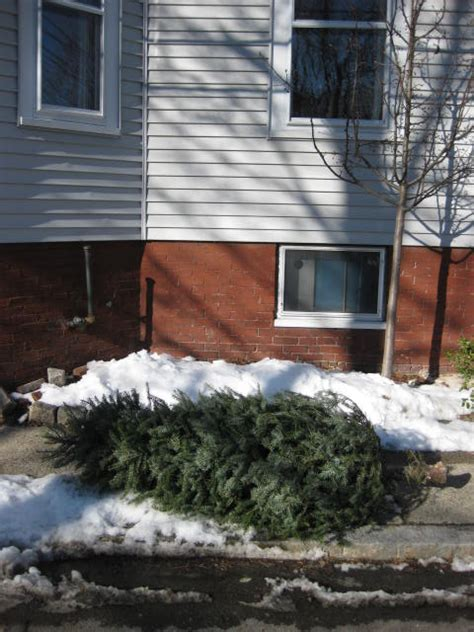 how to get rid of your christmas tree centers and squares