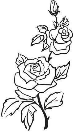 Roses, flowers, vine, leaves, bud, open, clip art, black