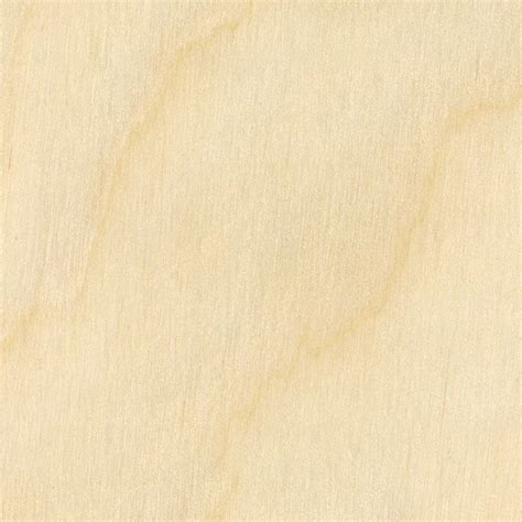 Black And White Wallpaper Images Birch Plywood Texture Seamless 04549