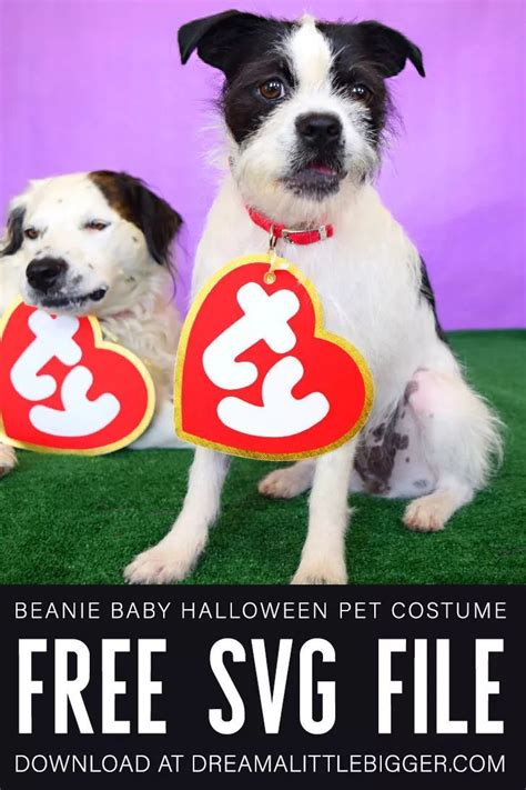 Go premium and upload icons unlimited. Beanie Baby Costume Free SVG Files   Beanie baby costumes ...
