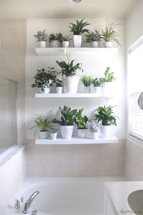 plant wall   bathroom house mix decor diy