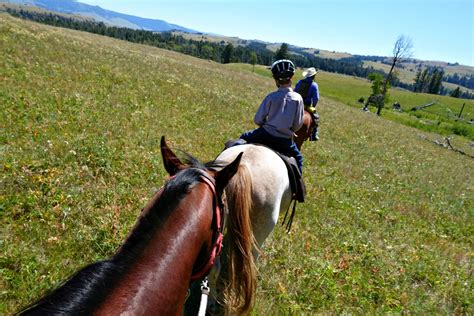 horseback riding yellowstone travelingmel pack trips park national wilderness trip