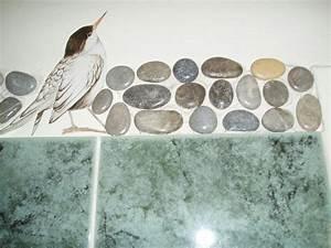 Frise en galet pour salle de bain Créations Mosaïque de valeacrea n°3819 (Vue 31778 fois)