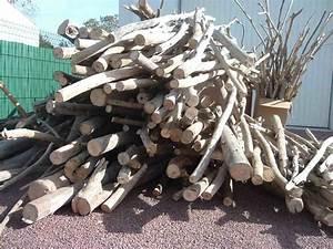 Ou Acheter Du Bois Flotté : du ramassage de bois flott d co nature cr ations en ~ Teatrodelosmanantiales.com Idées de Décoration