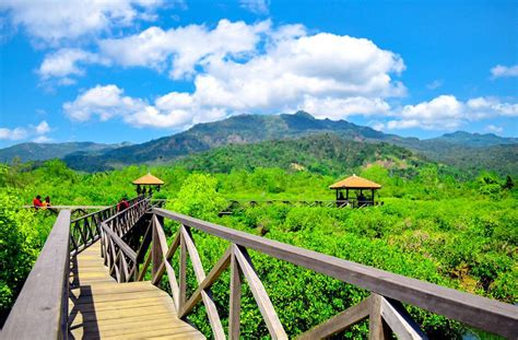 wisata hutan mangrove  jawa timur  instagram