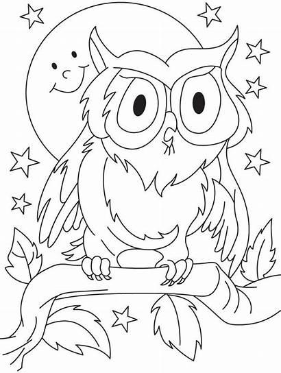 Coloring Owl Preschool Preschoolers Sheets Colouring Printable