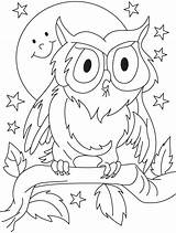 Coloring Owl Pages Outline Drawing Summer Preschool Para Clipart Sheets Preschoolers Cute Baby Printable Adult Colouring Owls Colorir Template Colorear sketch template