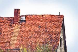 Dach Neu Decken Und Dämmen Kosten : was kostet ein neues dach dachsanierung herold ~ A.2002-acura-tl-radio.info Haus und Dekorationen